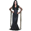 Morticia Adult Costume (Small)