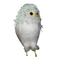 Feathered White Owl