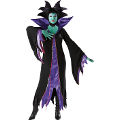 Maleficent Adult Costume (Medium)