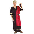 Roman Senator Adult Costume (Medium)