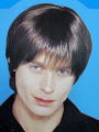 70's Mod Guy Brown Wig