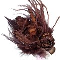 Vanessa Brown Rose Fascinator