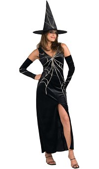 Web Spinner Witch - Adult Costume (Medium)