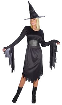 Classy Witch Adult Plus Costume